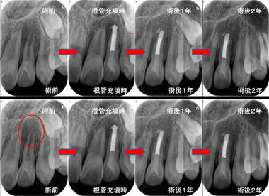 EEdental yuu (1).jpg