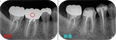 2015 EEdental fu (1).jpg