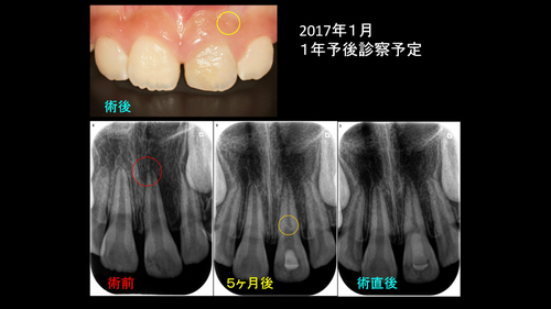 2016 EEdental  koube (2).jpg