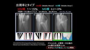 EEdental MM MD.jpg